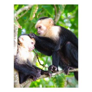 Monkey Love Letterhead