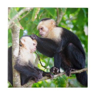 Monkey Love Tile