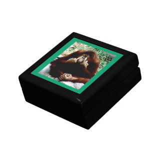 Monkey Mojo Jewelry Boxes