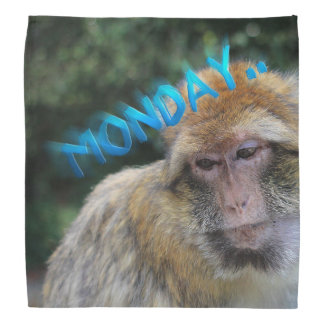 Monkey sad about monday bandana