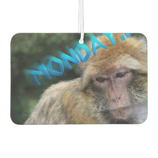 Monkey sad about monday car air freshener