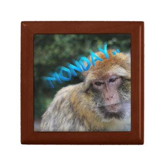 Monkey sad about monday gift boxes