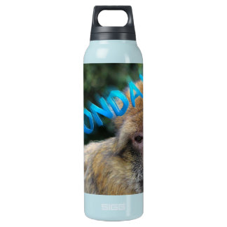 Monkey sad about monday insulated water bottle