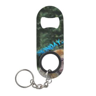 Monkey sad about monday mini bottle opener