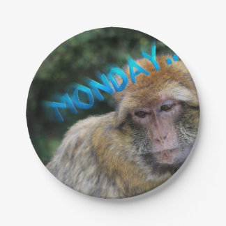 Monkey sad about monday paper plate