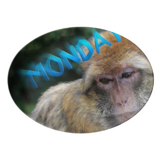 Monkey sad about monday porcelain serving platter