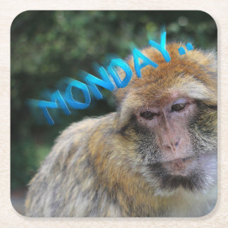 Monkey sad about monday square paper coaster
