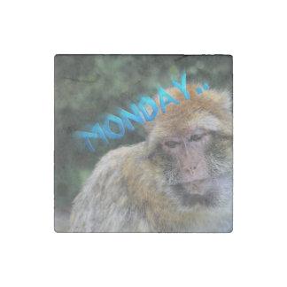 Monkey sad about monday stone magnets