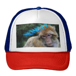 Monkey sad about monday trucker hat