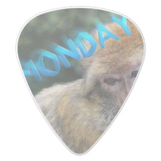 Monkey sad about monday white delrin guitar pick