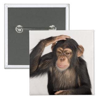 Monkey scratching its head pin