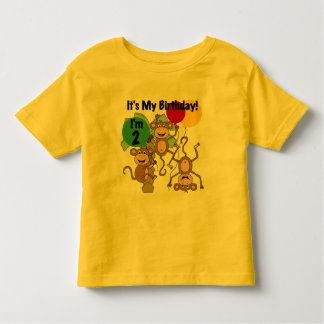 Monkey Shine 2nd Birthday Tshirts and Gifts