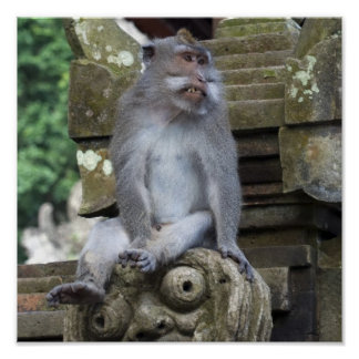 Monkey sitting at a statue in Bali Poster