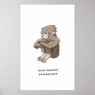 monkey trivia poster
