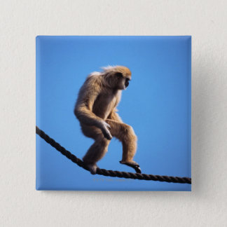 monkey walking on rope 2 inch square button