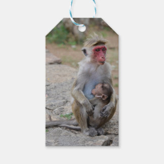 monkey with her baby gift tags