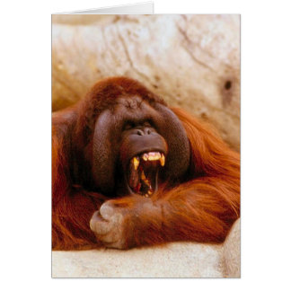 Monkey yelling card