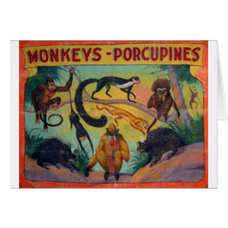 Monkeys and Porcupines Card