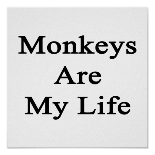 Monkeys Are My Life Posters