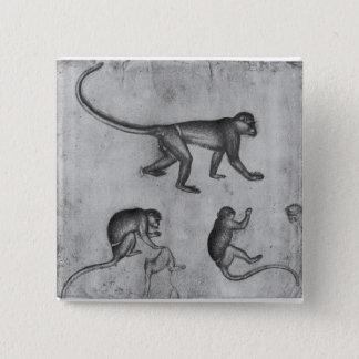 Monkeys, from The Vallardi Album 2 Inch Square Button
