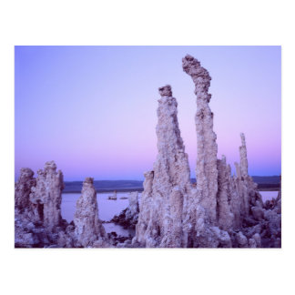Mono Lake Reserve. California. USA. Tufa Postcard