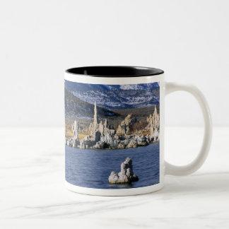 MONO LAKE TUFA STATE NATURAL RESERVE, Two-Tone COFFEE MUG