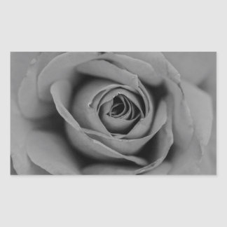 Monochromatic Rose Rectangle Sticker