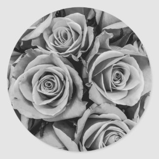 Monochromatic Roses Round Sticker