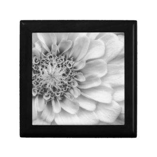 Monochromatic Zinnia Gift Box