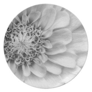 Monochromatic Zinnia Plate