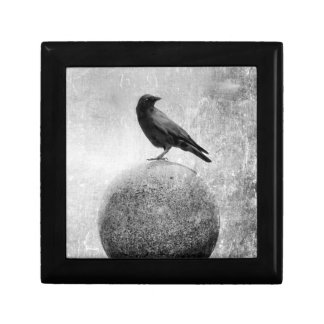 Monochrome Crow on Globe Gift Box
