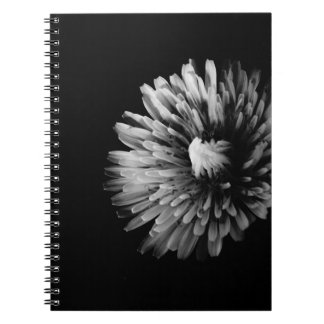 Monochrome Dandelion Notebooks