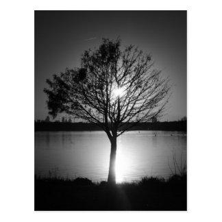 monochrome photography postcard