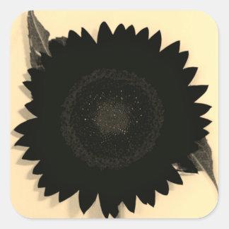 Monochrome Sunflower Square Sticker