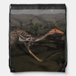 Mononykus dinosaur by night drawstring bag