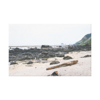 Monotone seashore canvas print