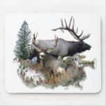 Monster bull trophy buck mouse pads