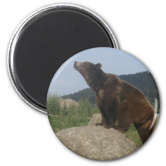 MONTANA GRIZZY ENCOUNTERS 2 INCH ROUND MAGNET