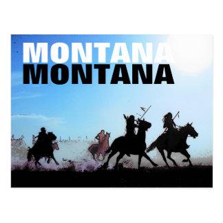 Montana Horses Postcard