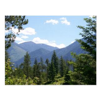 Montana Landscape Postcard