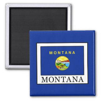 Montana Magnet