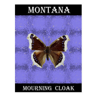 Montana Mourning Cloak Butterfly Post Cards