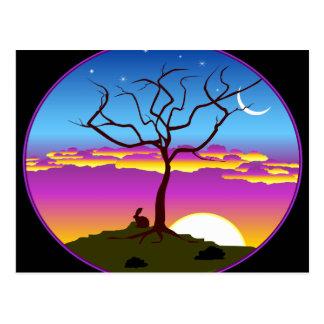 Montana Sunrise Postcard