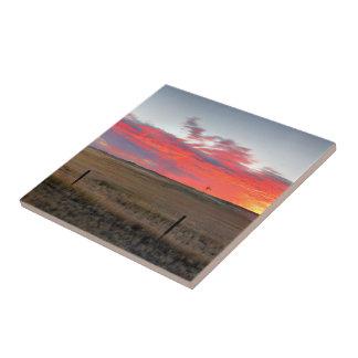 Montana Sunrise Tile