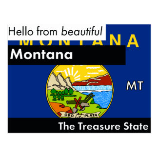 Montana The Treasure State Postcard