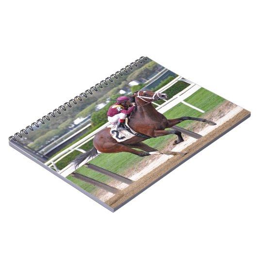 Montauk Notebook