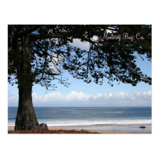 Monterey Bay, Ca. Postcard