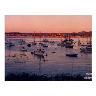 Monterey Bay California 1985 Postcard