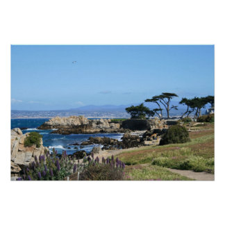 Monterey Bay Coastline, Spring Photo Poster