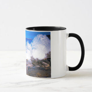 Monterey Bay, on a ringer mug